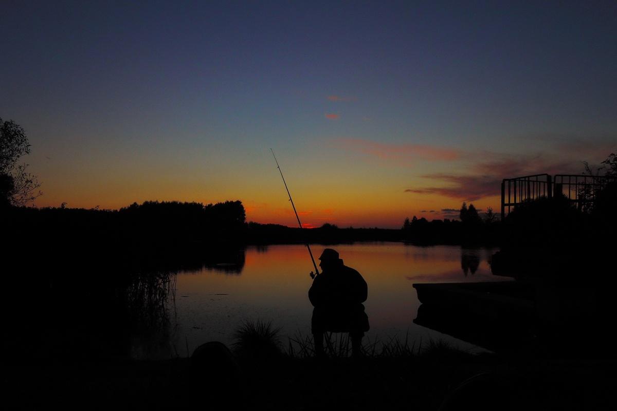 подпрыгнула картинки рыбалки ночью животные