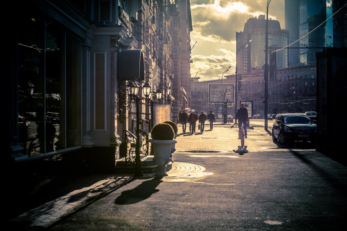 хомячки город тени картинка вариант подачи особенно