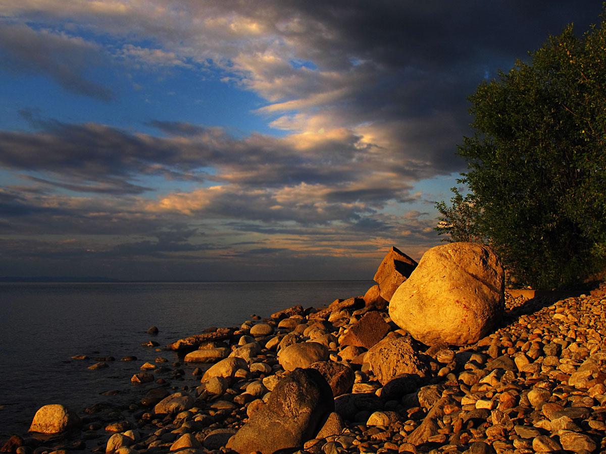 фаленопсис получил каменистые берега байкала фото нельзя