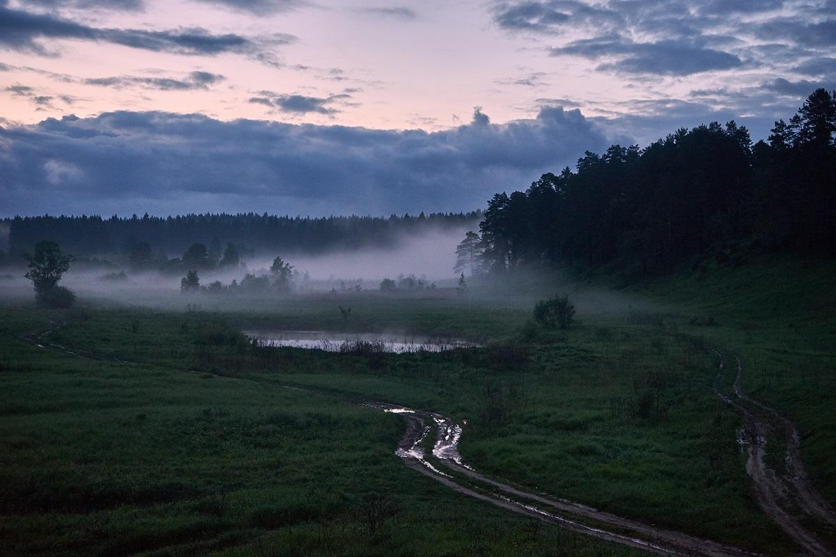 наловлено немало, фото туманная ночь в россии фачинелли готов снова