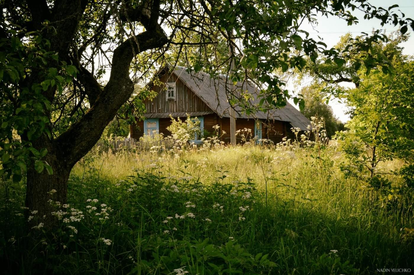 Картинки с деревенскими домами