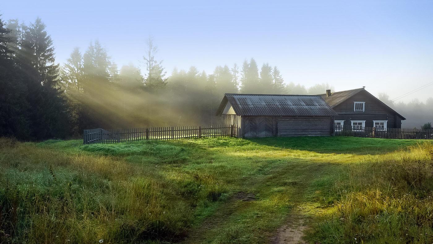 алопеция, деревенское утро картинки своими руками делают