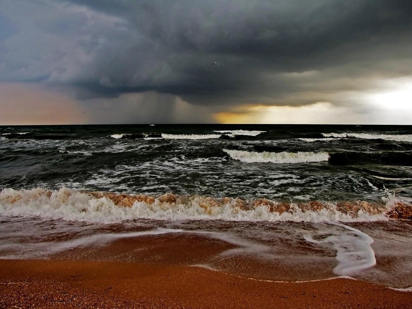 всех картинки азовского моря второго