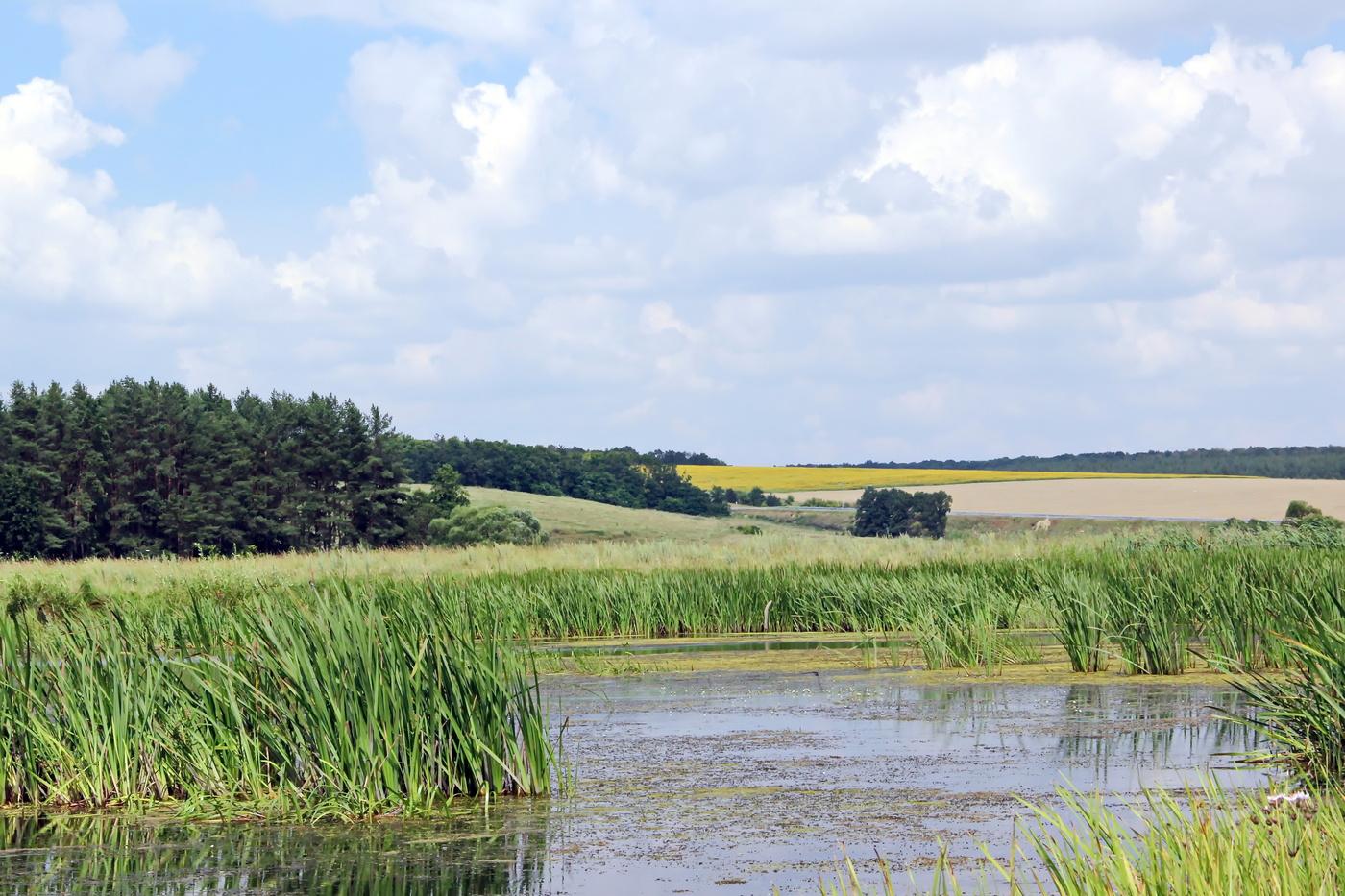Картинки белгородской области природа