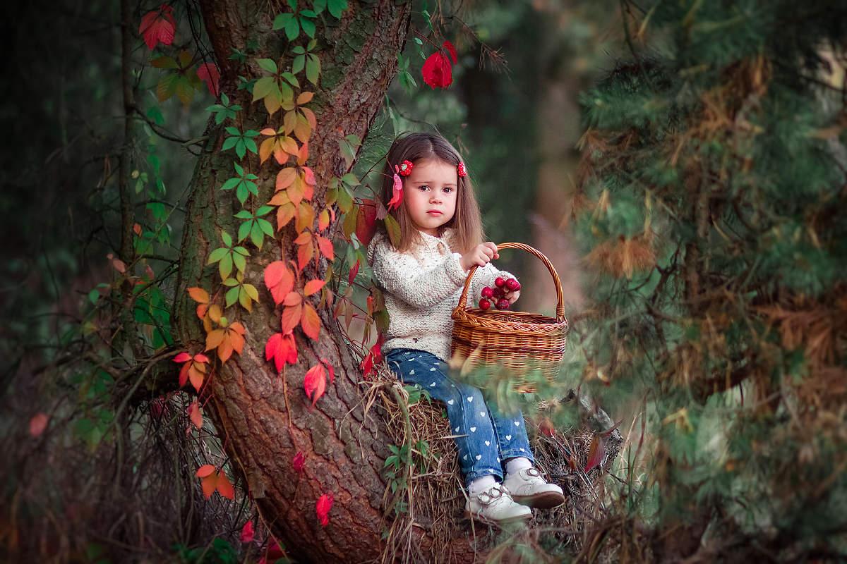 интересные идеи для фотосессии в лесу фото подобных
