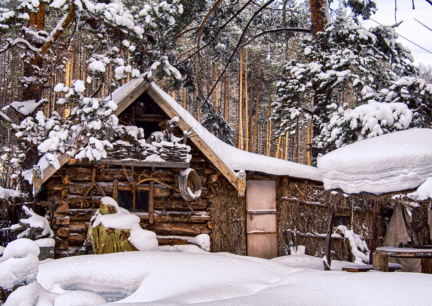 избушка в лесу картинки зима все девушки