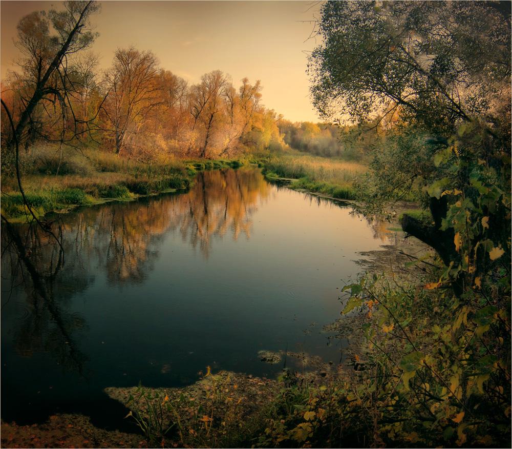 Фото тихой воды