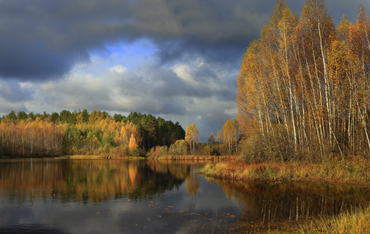 Осень октябрь картинки