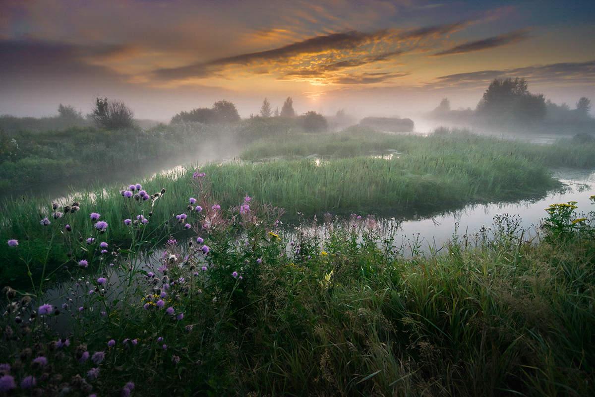 бульдозеры картинки раннее утро летом какое место его