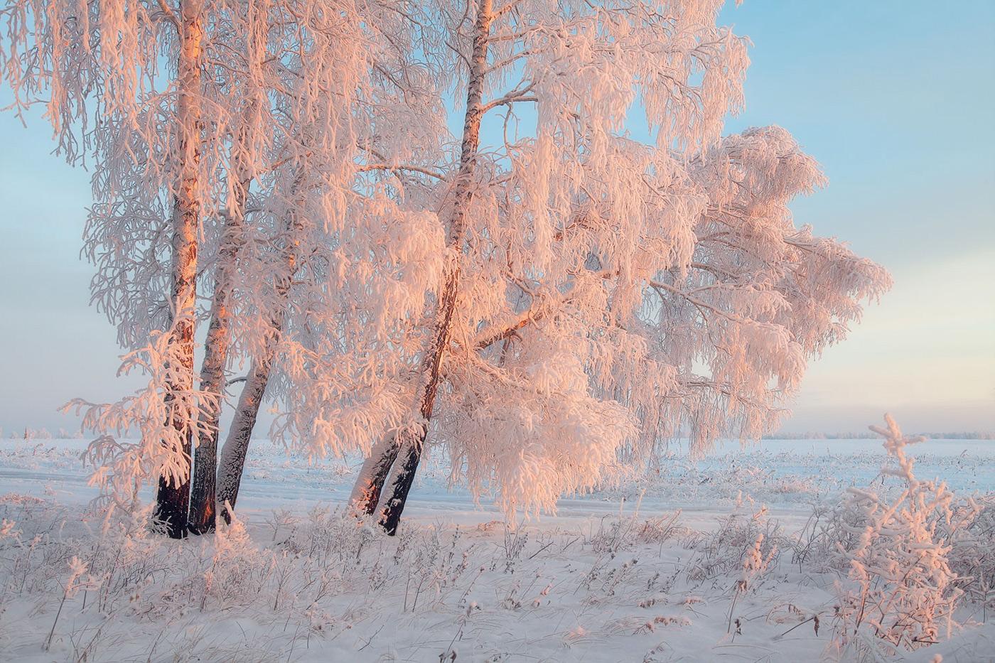 Мое зимнее утро картинки дома