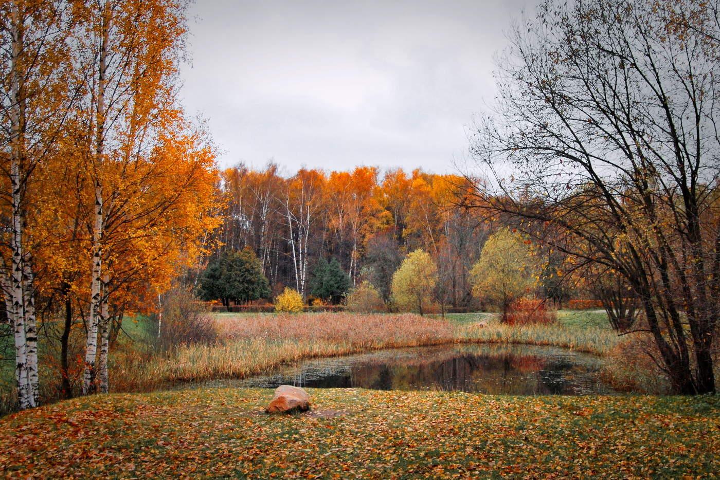 Картинки осенние в октябре