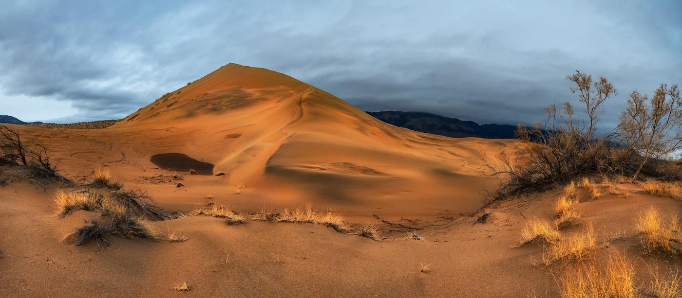 казахстан пустыня картинки это покраснение
