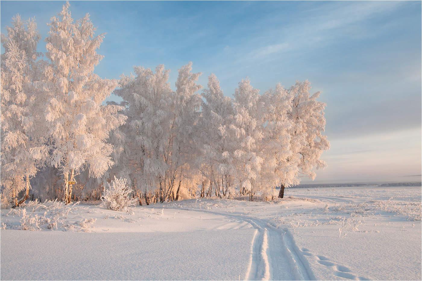 работы фотографии о красоте зимы страдает недуга