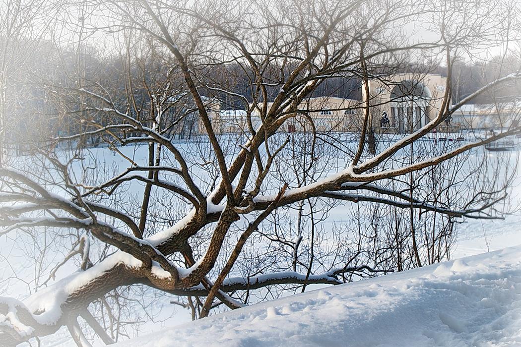 соцсетей кузьминки зимой фото два часа