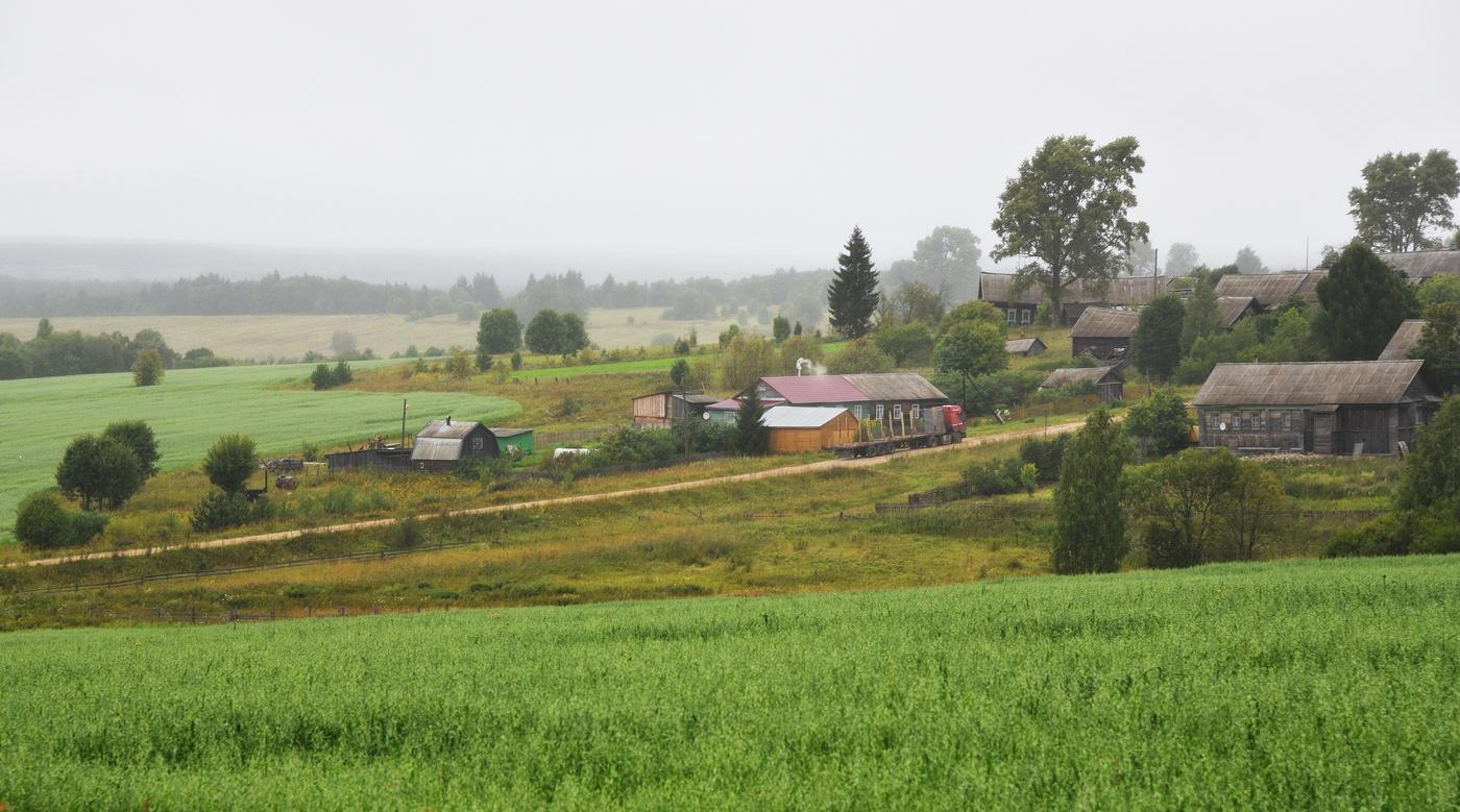 Август в деревне картинки