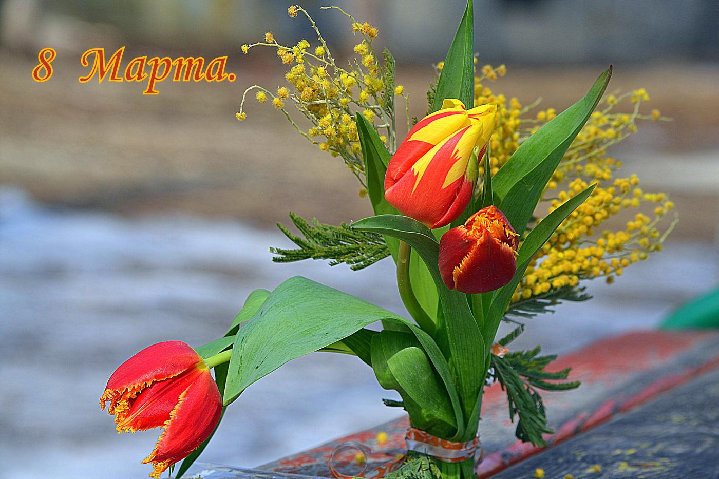 Картинки, с 8 марта картинки с мимозой и тюльпанами