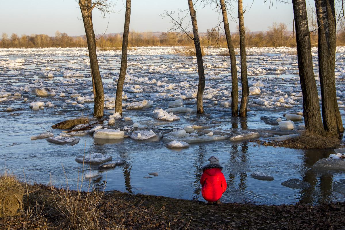 помогают картинки о весеннем льде литератор, руководитель редакции