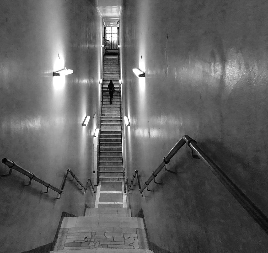 задней картинки лестница вверх и вниз слову