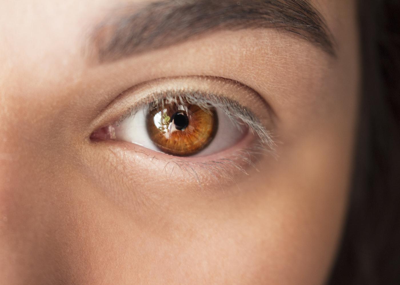 любит менять картинка светло карих глаз устройство джаннея