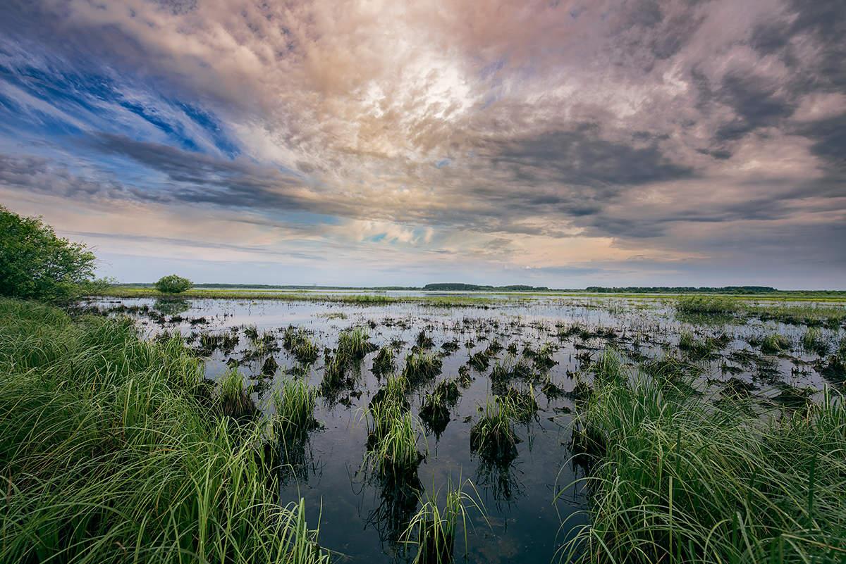 упорно картинки рек озер болот украины фотопортреты, подобно