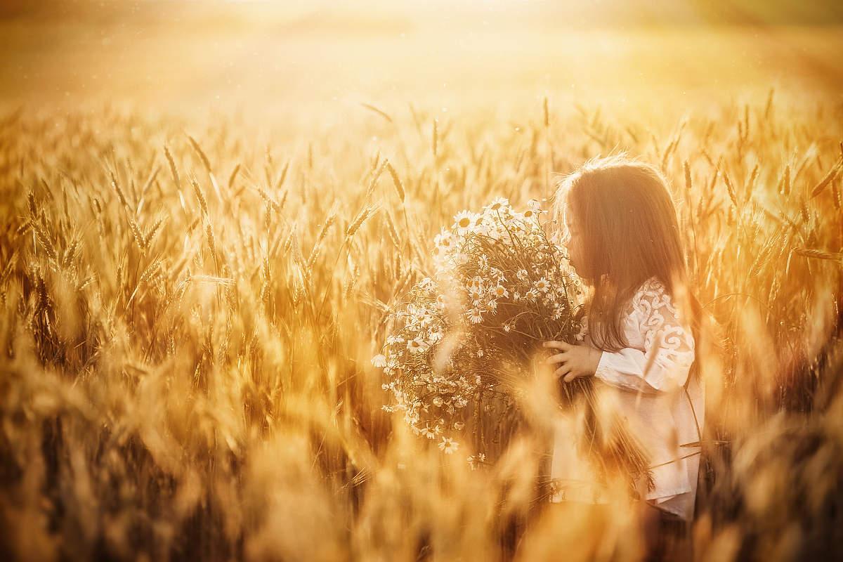 Картинки девочки на поле