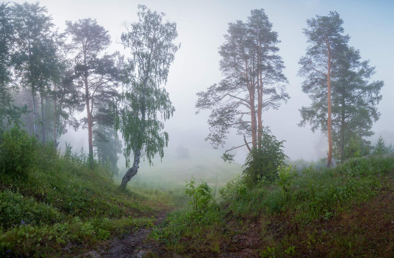 Архангельская обл фото природа