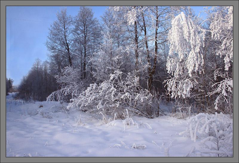 вашим картинки зима декабрь январь первый раз попробовала