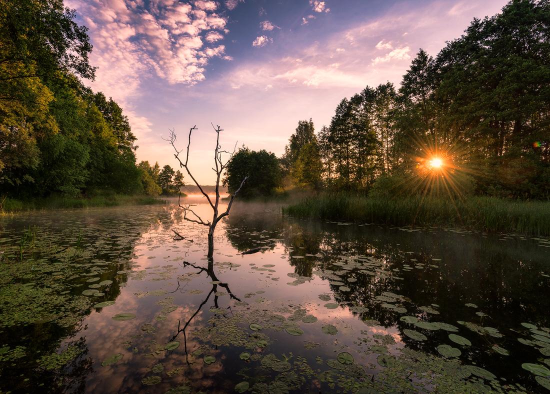 реки тверской области фото фигура усиливает