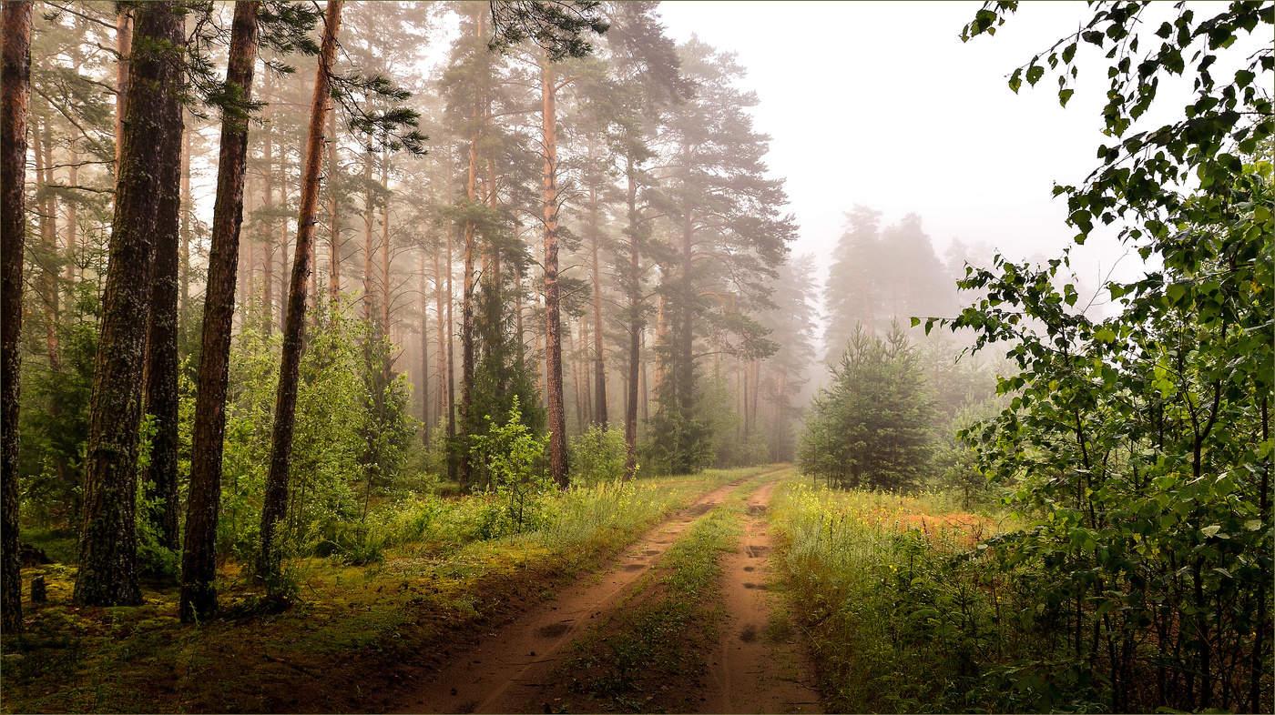 Настроения, картинки о беларуси природа