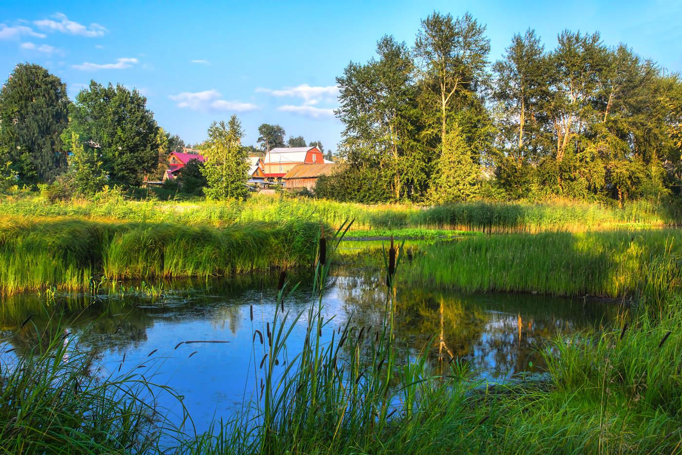 картинки летнего дня в деревне