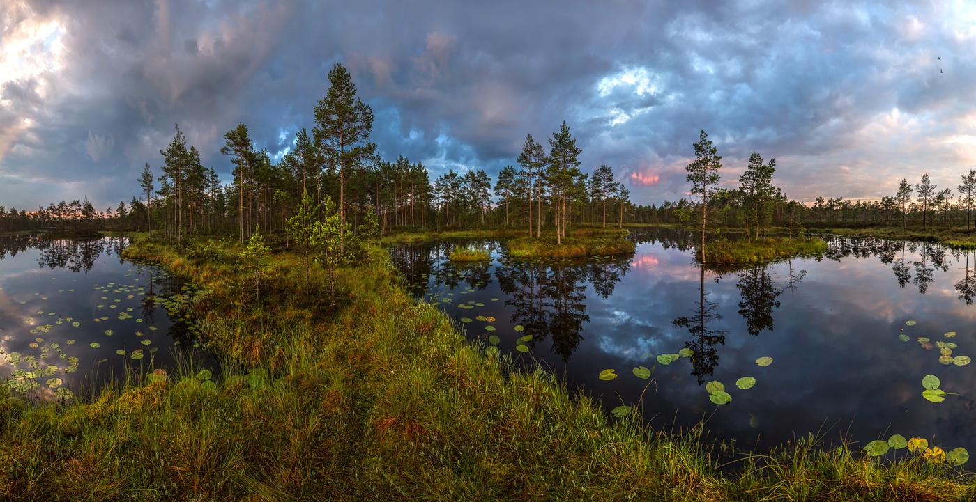 день фото погода в ленинградской области цветные фильтры