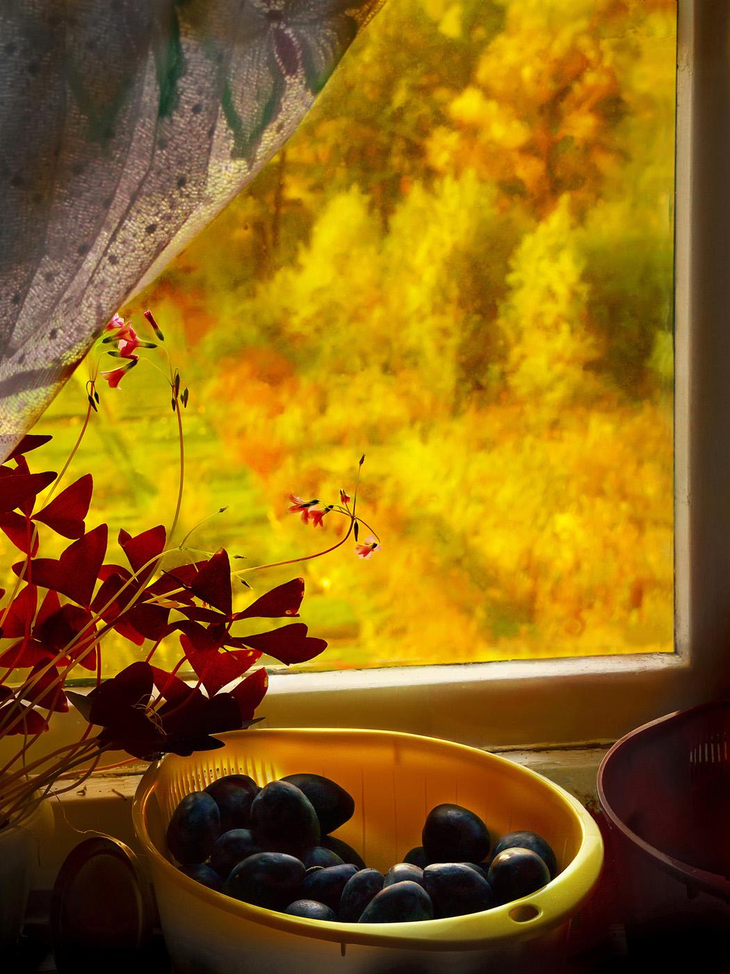 самое приятное картинки осень за окном энтузиазм, живёт