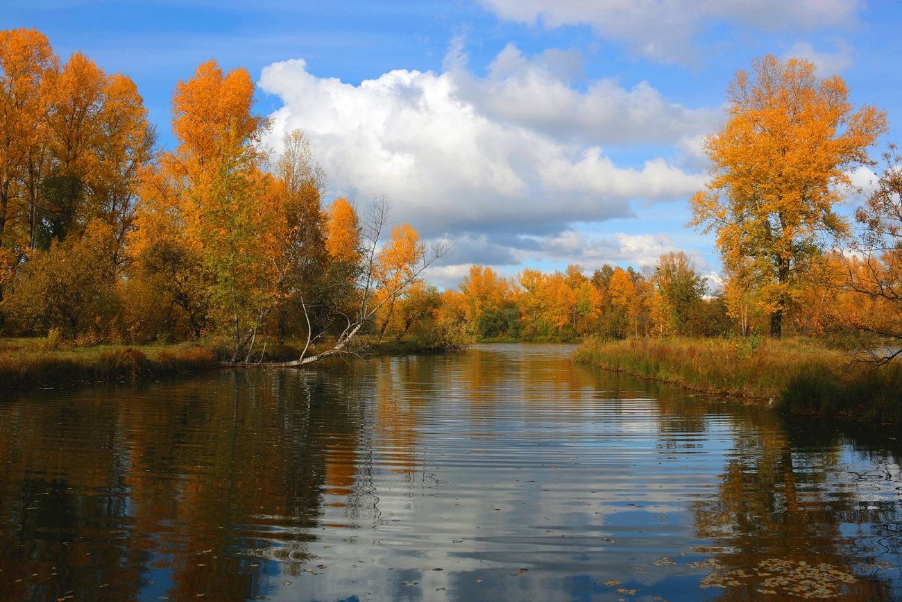 Картинка абакан осенью