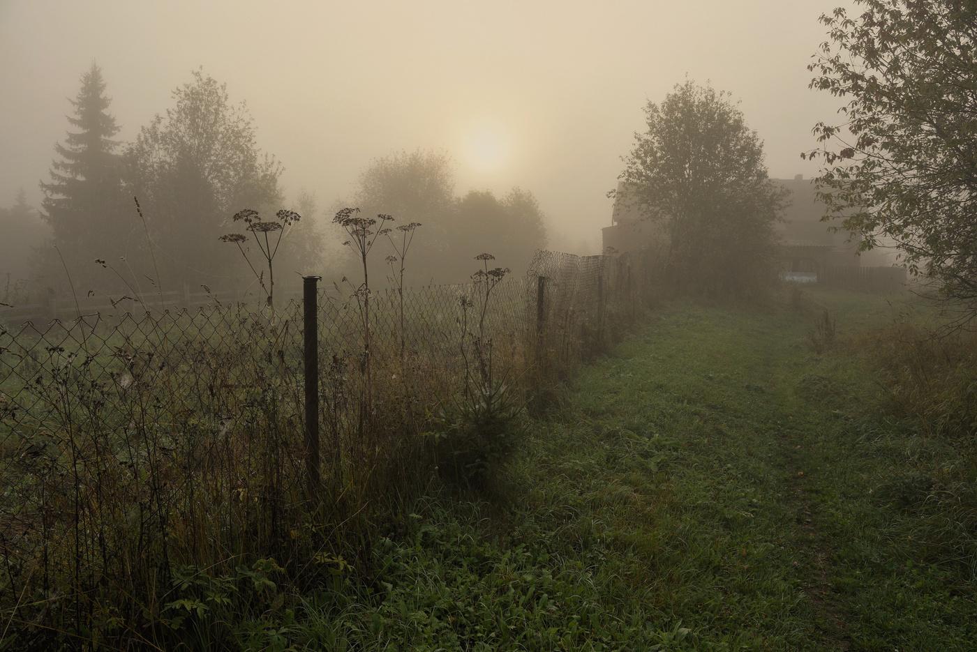 Туман в деревне фото