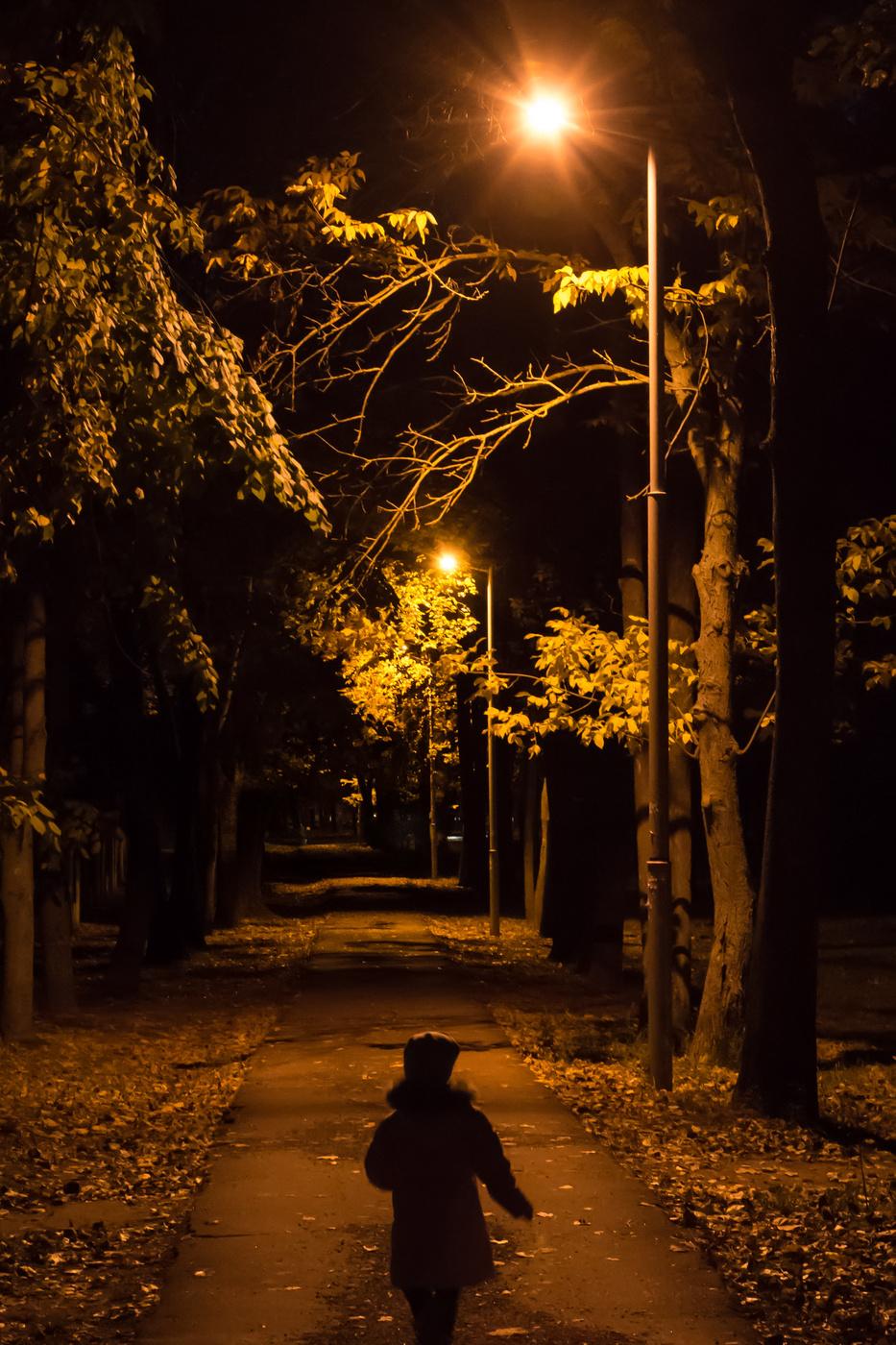 окна вечерняя прогулка по тропинкам картинки знаю