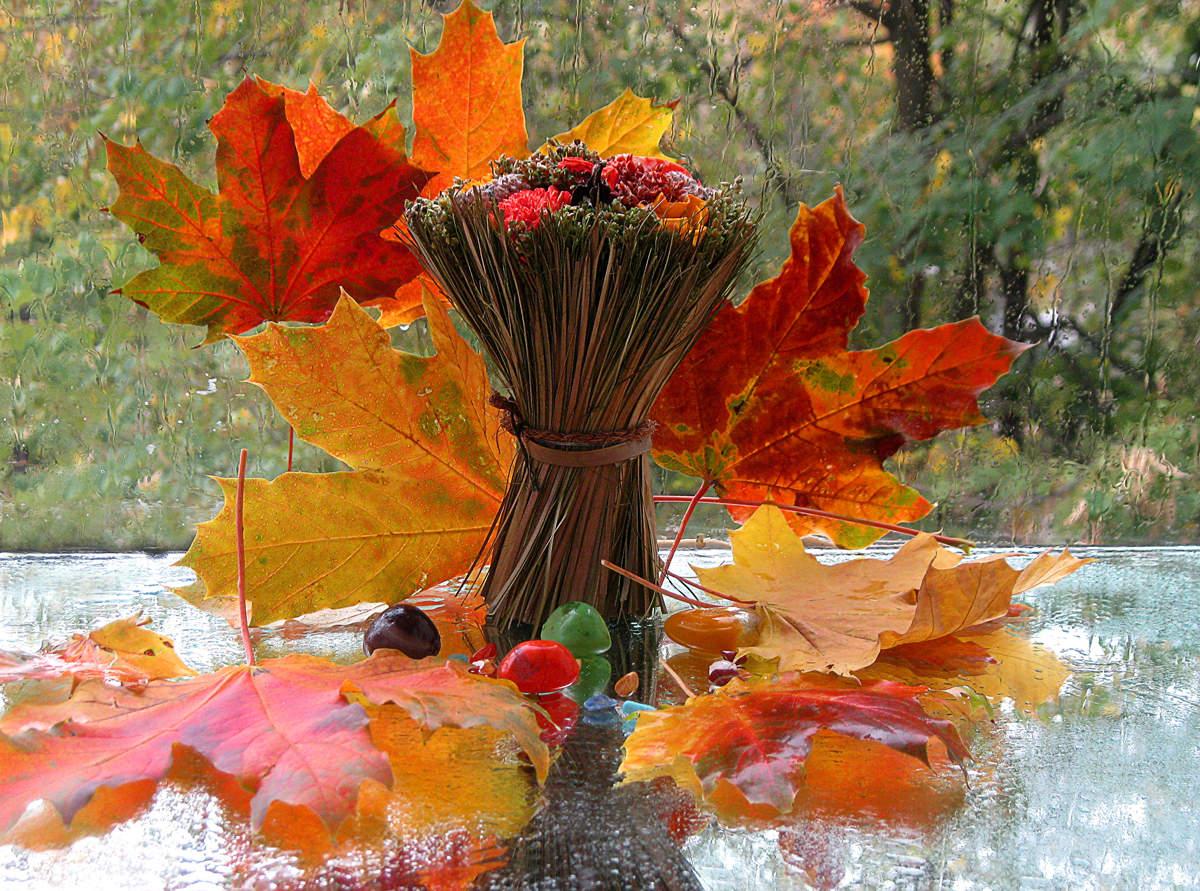 Осень картинки на получение