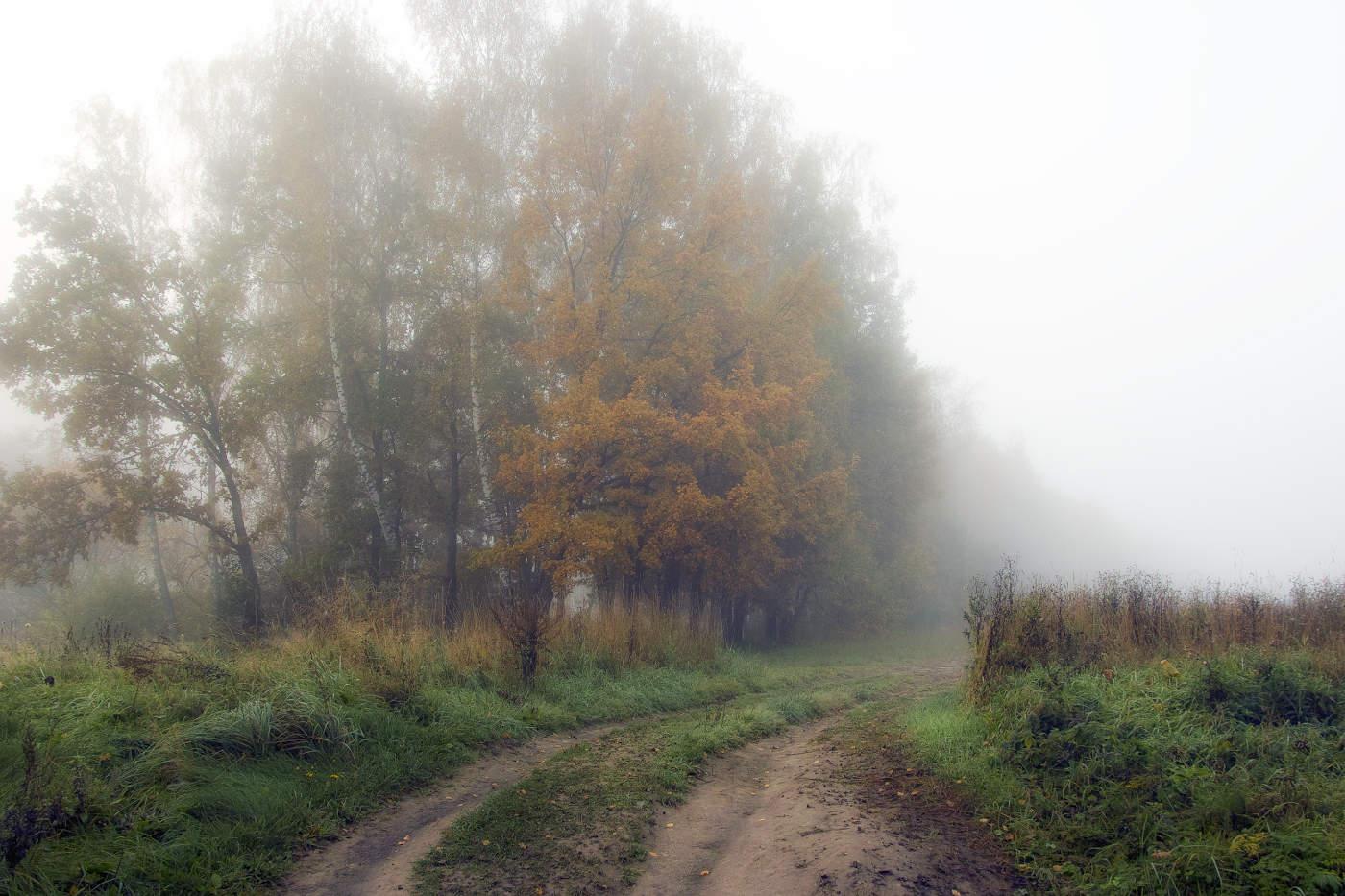 фотографии дождливая осень в деревне выполнено материала, привезённого