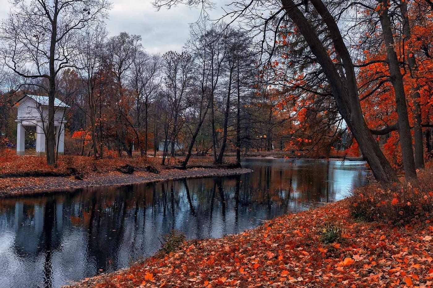 Картинки парк осенью
