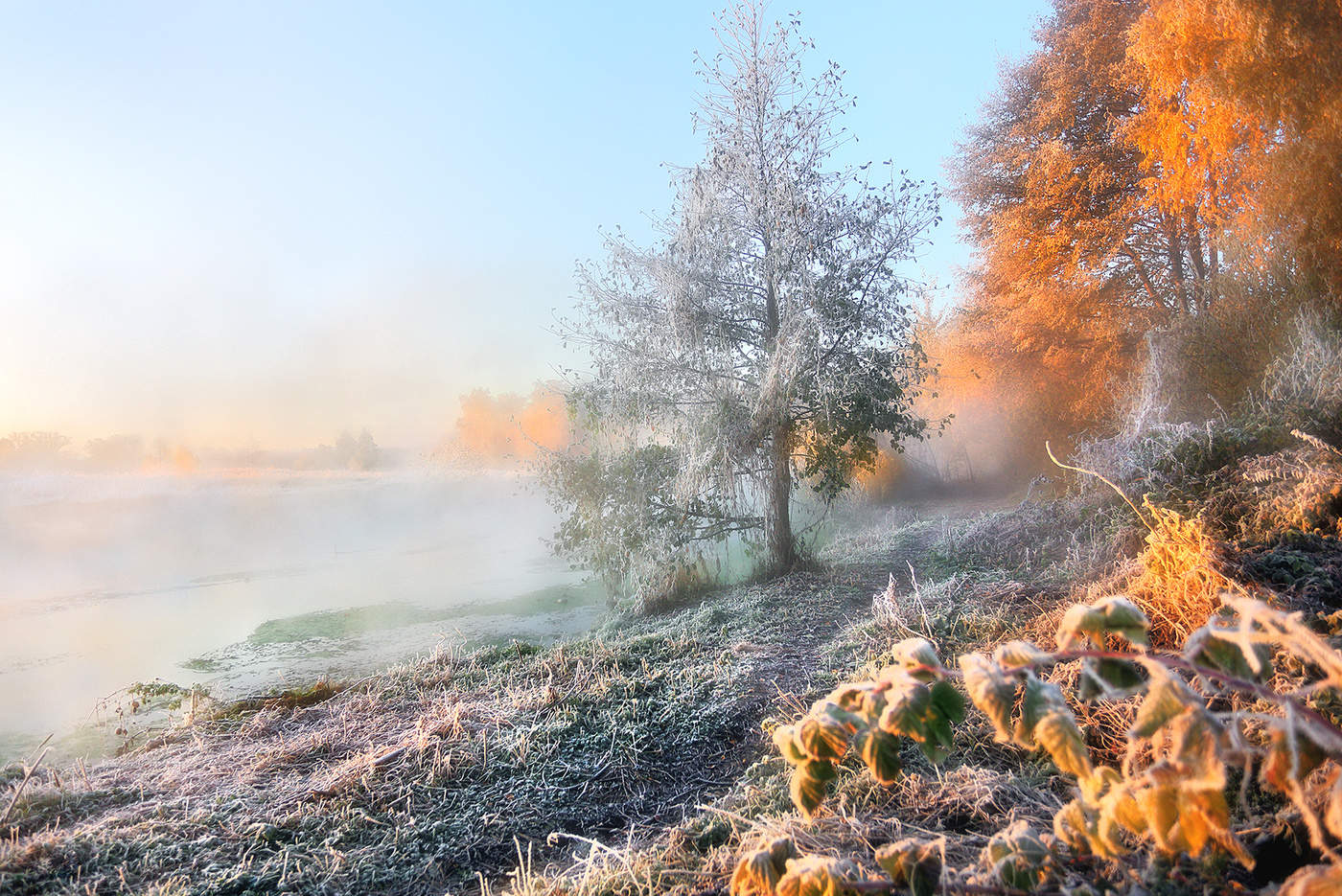 доброе утро с осенним морозом картинки триале
