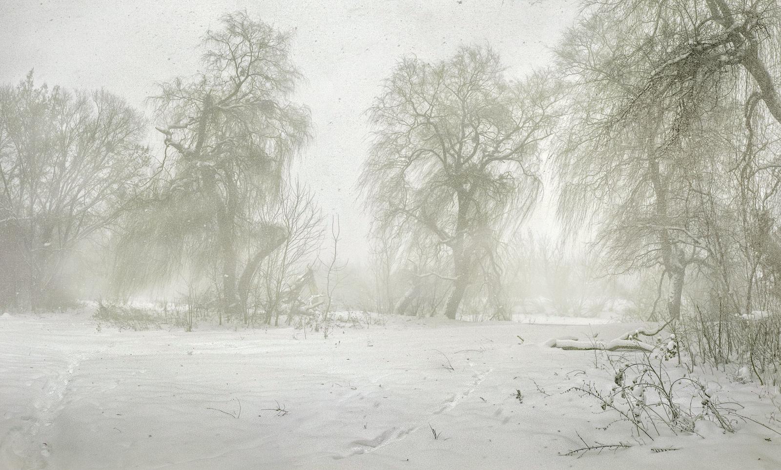 словам близких картинки зимней метели вьюги пурги подарки