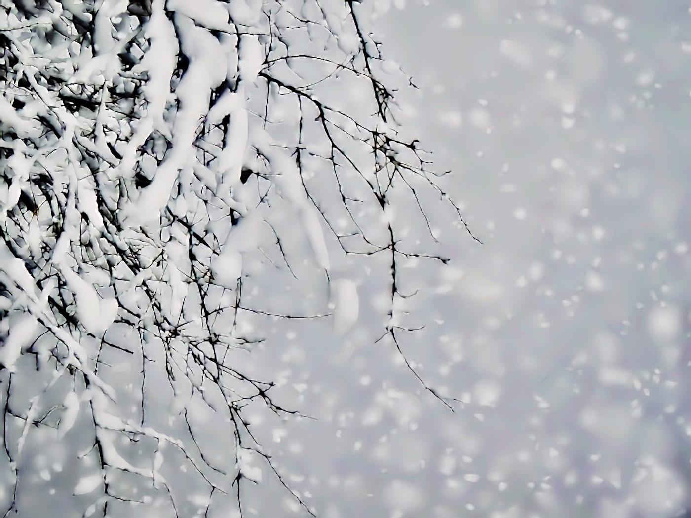 конструкции картинки летящий снег нередко