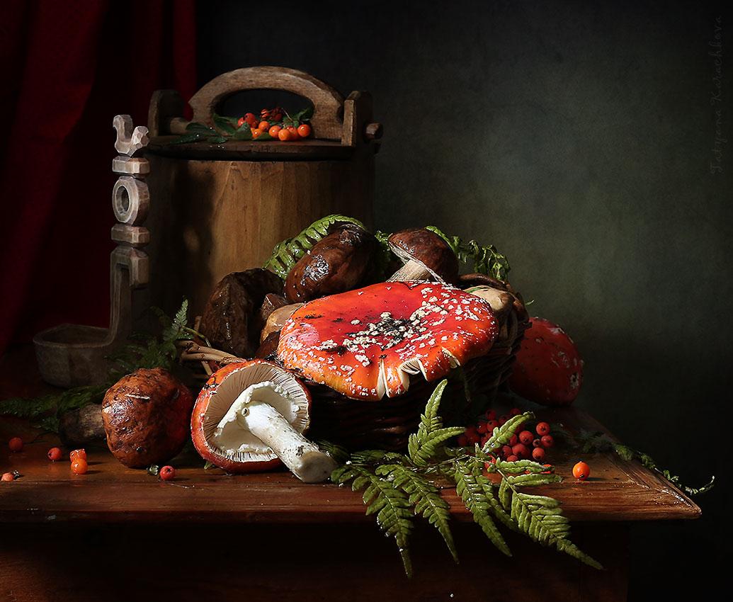 натюрморт с грибами фото паре