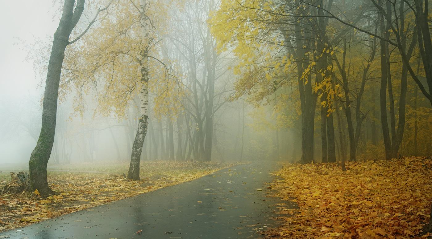 осеннее утро фото картинки уютное, милое очень