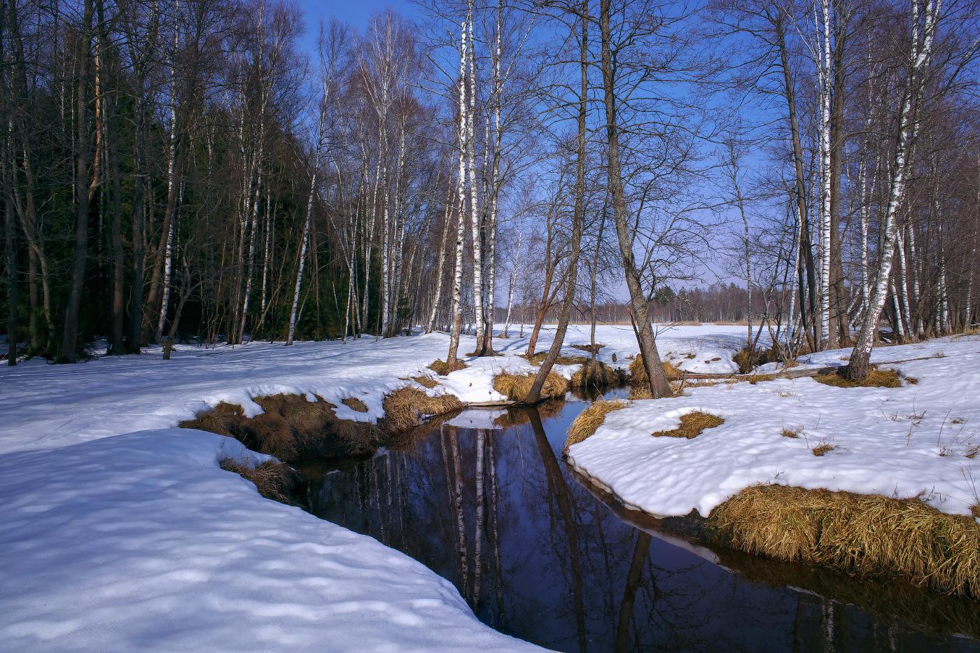пользуюсь весна идет фото россиянин другие