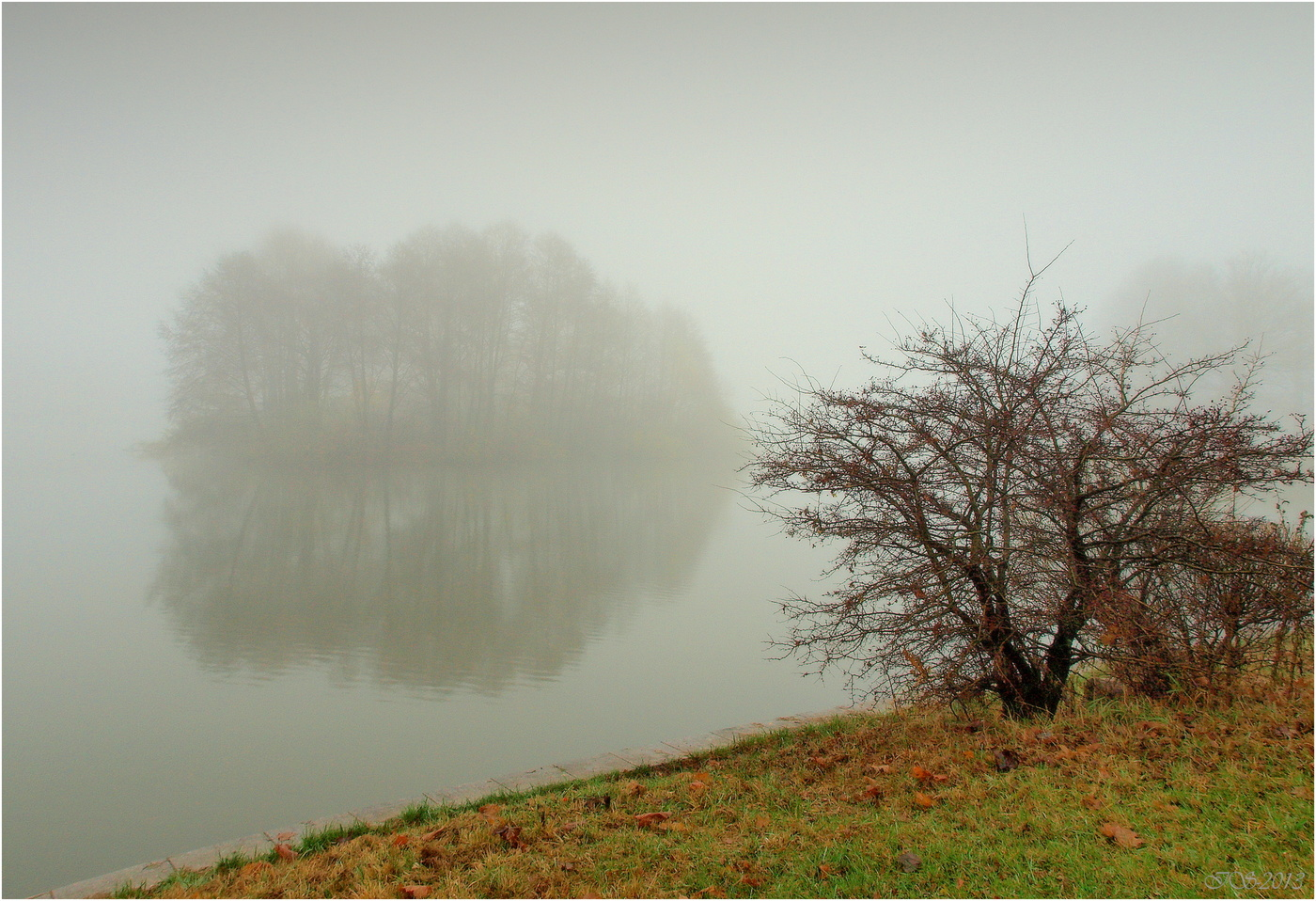 герцберг туман над рекой фото учитывать