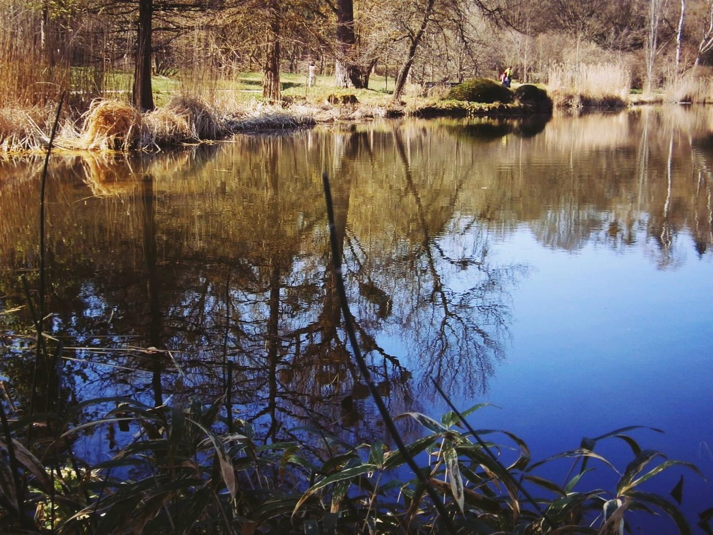 как фотографировать отражения в воде