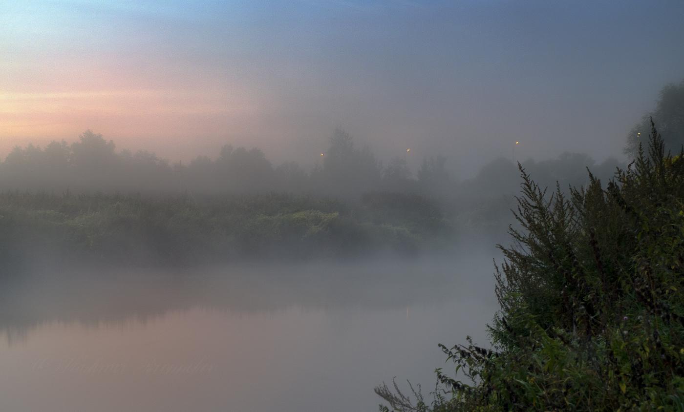фото туманная ночь в россии белые пионы