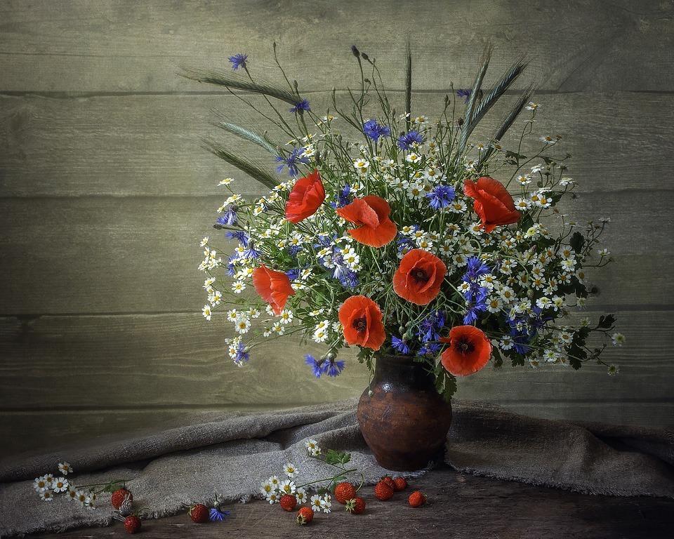 Цветы африки фото продаже наконечник