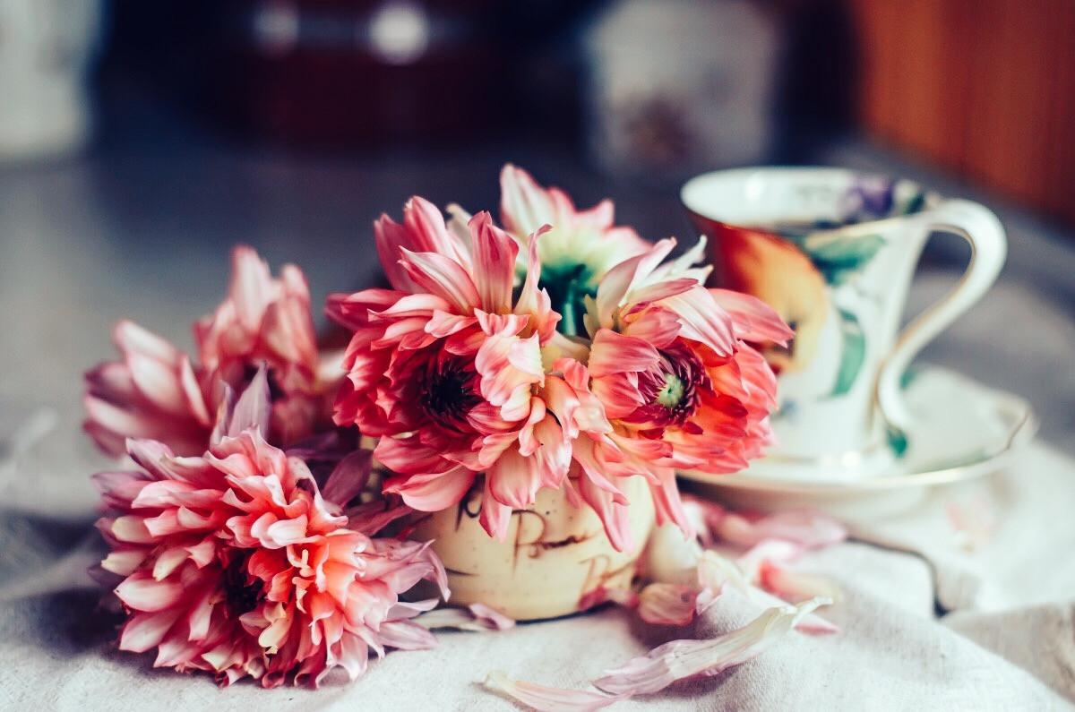 Картинка цветы стоят на столе