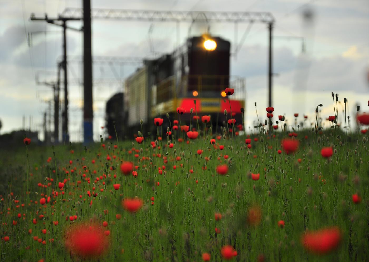 поезд весной в картинках для сделать этого